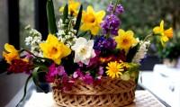 122003_bukiet-kwiatow-koszyk-pleciona-podkladka