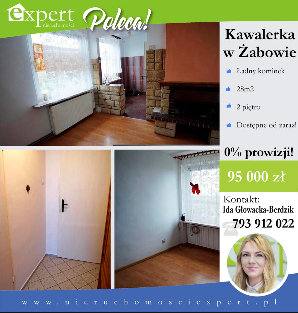 Oferta FB Żabów - Ida (1)