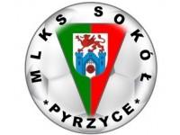 logosokol2